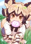 1girl :3 african_wild_dog_(kemono_friends) african_wild_dog_print all_fours animal_ear_fluff animal_ears animal_print bangs black_hair blush bodystocking brown_eyes commentary_request day dog_ears dog_tail eyebrows_visible_through_hair flipped_hair food grass highres japari_bun kemono_friends light_brown_hair long_sleeves looking_at_viewer mouth_hold multicolored_hair ooba_jun outdoors shirt short_over_long_sleeves short_sleeves shorts sidelocks smile solo tail twitter_username two-tone_hair white_shirt
