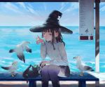 1girl bird black_cat black_hair black_legwear black_skirt blue_eyes braid camera cat clouds cowboy_shot day frog frog_on_head hat highres long_sleeves ocean original pleated_skirt seagull shrimp_cc sitting skirt sky solo thigh-highs witch witch_hat