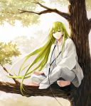 1other androgynous bangs barefoot black_neckwear enkidu_(fate/strange_fake) fate/grand_order fate/strange_fake fate_(series) green_eyes green_hair ima_(luce365) in_tree legs_crossed long_hair long_sleeves looking_at_viewer outdoors pants sitting sitting_in_tree tree very_long_hair white_pants white_robe