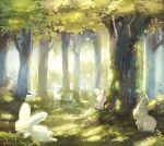 dappled_sunlight day forest grass manino_(mofuritaionaka) nature no_humans original outdoors rabbit sitting sleeping sunlight tree