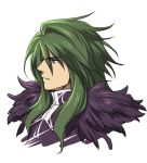 1boy commentary_request green_eyes green_hair ildon kanikame long_hair male_focus saga saga_frontier solo white_background
