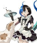 1girl :o alternate_costume apron black_dress black_eyes black_hair black_neckwear blue_eyes blue_hair bow bowtie claws commentary_request cup dog dog_request dress enmaided eyebrows_visible_through_hair hair_ornament hairclip heterochromia highres holding japanese_skink_(kamemaru) kamemaru looking_down maid maid_apron monster_girl multicolored_hair original puffy_short_sleeves puffy_sleeves scared short_hair short_sleeves spilling standing tail teacup thighs tray two-tone_hair waist_apron white_apron