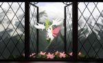 commentary creatures_(company) english_commentary flower flying game_freak gen_4_pokemon green_eyes hobermen looking_at_viewer nintendo no_humans open_window pokemon shaymin solo window