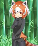 1girl :o animal_ears bamboo bamboo_forest bangs black_gloves black_legwear black_neckwear black_shirt black_shorts blush bow bowtie breasts brown_eyes brown_hair commentary_request cowboy_shot day eyebrows_visible_through_hair forest fur_collar gloves highres kemono_friends lesser_panda_(kemono_friends) looking_at_viewer multicolored_hair nature outdoors pantyhose parted_lips shin01571 shirt short_shorts shorts small_breasts solo striped_tail tail two-tone_hair white_hair
