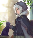 1girl absurdres animal bangs black_cat black_cloak black_jacket black_ribbon blue_eyes blurry breasts cat cloak commentary_request depth_of_field fate_(series) fur_collar gray_(lord_el-melloi_ii) green_eyes green_skirt highres hood hooded_cloak jacket leaf long_sleeves looking_down lord_el-melloi_ii_case_files parted_lips plaid plaid_skirt plant profile ribbon shi_qi_kuang_beng silver_hair skirt sleeves_past_wrists small_breasts solo table upper_body