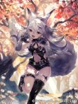 1girl 2017 animal_ears arms_up ass_visible_through_thighs autumn autumn_leaves belt black_footwear black_legwear black_leotard boots center_opening character_request claw_pose claws commentary_request dated fang forest latex leg_up leotard long_hair natsuiro_xx nature navel official_art open_mouth outdoors red_eyes silver_hair single_thighhigh solo standing standing_on_one_leg tail teikoku_senki thigh-highs thigh_strap tree wolf_ears wolf_tail