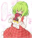 1girl aka_tawashi ascot bangs blush bow box breasts commentary_request cowboy_shot eyebrows_visible_through_hair flying_sweatdrops green_hair hair_between_eyes highres holding holding_box kazami_yuuka long_sleeves looking_at_viewer medium_breasts nose_blush petticoat plaid plaid_skirt plaid_vest red_bow red_eyes red_skirt red_vest shirt short_hair skirt skirt_set solo touhou translation_request vest white_background white_shirt yellow_neckwear
