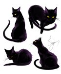 absurdres artist_name black_cat black_eyes cat cat_focus from_behind from_side highres looking_at_viewer looking_back multiple_views no_humans original sheya signature simple_background sitting whiskers white_background yellow_sclera