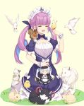 1girl :> :d ^_^ anchor animal animal_ear_fluff animal_on_shoulder bangs beige_background bird bird_on_finger bird_request blue_eyes blue_hair blue_nails blunt_bangs blush blush_stickers bow braid breasts brown_eyes cat character_doll chick cleavage closed_eyes closed_eyes closed_mouth commentary_request dog dress eyebrows_visible_through_hair facing_away fingernails hair_ribbon hand_up heterochromia highres hololive kagura_mea kagura_mea_channel minato_aqua multicolored_hair nail_polish neps-l on_finger on_grass on_shoulder open_mouth pink_hair puffy_short_sleeves puffy_sleeves purple_bow purple_dress purple_ribbon rabbit ribbon short_sleeves sidelocks small_breasts smile squirrel streaked_hair twintails two-tone_hair virtual_youtuber white_bow white_hair wolf