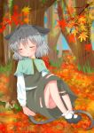 1girl absurdres against_tree ahoge animal_ears ankle_socks aqua_capelet ashino_chimado autumn autumn_leaves black_footwear black_skirt black_vest blue_sky blush day ears_down feet_together forest ginkgo_leaf hair_between_eyes hand_on_ground head_tilt highres knees_up leaf long_sleeves maple_leaf mary_janes mouse_ears mouse_tail mushroom nature nazrin open_mouth outdoors panties pantyshot pantyshot_(sitting) shirt shoes sitting skirt sky sleeping solo striped striped_panties tail touhou tree under_tree underwear upper_teeth vest white_legwear white_shirt