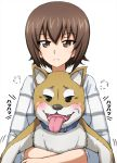 1girl =3 animal bangs blush casual closed_eyes commentary dog eyebrows_visible_through_hair frown girls_und_panzer highres holding holding_animal holding_dog long_sleeves looking_at_viewer motion_lines nishizumi_maho omachi_(slabco) shiba_inu shirt short_hair simple_background smug solo striped striped_shirt upper_body white_shirt