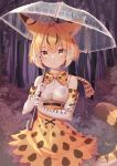 1girl absurdres animal_ears animal_ears_(artist) bare_shoulders belt blonde_hair blush bow bowtie commentary_request cowboy_shot elbow_gloves extra_serval_(kemono_friends) eyebrows_visible_through_hair gloves high-waist_skirt highres japari_symbol kemono_friends multicolored_hair print_gloves print_neckwear print_skirt rain serval_ears serval_print serval_tail short_hair skirt sleeveless solo tail transparent transparent_umbrella umbrella yellow_eyes