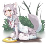 1girl animal_ear_fluff animal_ears blazer blue_eyes boots bush commentary_request day dog_(mixed_breed)_(kemono_friends) dog_ears dog_girl dog_tail elbow_gloves eyebrows_visible_through_hair fang forest frisbee full_body fur_trim gloves grey_gloves grey_hair grey_legwear hair_flaps harness heterochromia jacket kemono_friends kneeling miniskirt nature open_mouth orange_eyes outdoors pantyhose pleated_skirt scarf short_hair short_sleeves skirt solo sweater tail tail_raised tree white_gloves white_hair white_legwear yamai yellow_eyes