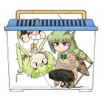 2girls :/ absurdres antennae bangs beige_sweater black_eyes black_legwear bow bowtie brown_skirt bug clothes_around_waist collared_shirt container dot_nose dress_shirt evolvingmonkey eyebrows_visible_through_hair grasshopper grasshopper_inoue green_hair green_neckwear green_sweater grey_eyes highres in_container insect insect_girl kneehighs long_hair mantis_akiyama mismatched_eyebrows multiple_girls orange_neckwear original pantyhose plaid plaid_neckwear plaid_skirt praying_mantis school_uniform shirt shoes short_hair simple_background skirt sleeves_folded_up sleeves_past_wrists sneakers squatting sweater sweater_around_waist twintails upside-down white_background white_shirt wing_collar