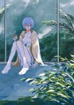 1girl amiyakinyu ayanami_rei bangs blue_hair bodysuit coffee expressionless hair_between_eyes highres jacket jacket_on_shoulders knees_up leaf looking_at_viewer neon_genesis_evangelion plant plugsuit red_eyes short_hair sitting skin_tight solo white_bodysuit