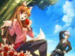 800x600 apple apple_core apples brown_hair craft_lawrence eating food fruit holding holding_fruit holo long_hair red_eyes short_hair silver_hair sitting sky spice_and_wolf tail wolf_ears yashima_takahiro