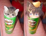1girl :3 animal_ears blue_eyes brown_hair cat cat_ears chips commentary denchisoft fish_hair_ornament food food_on_head hair_ornament highres object_on_head original personification photo-referenced potato_chips pringles real_life_insert sad short_hair stuck tears
