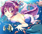 bad_id bad_pixiv_id dolphin fish gochuumon_wa_usagi_desu_ka? jewelry mermaid monster_girl monsterification necklace purple_hair shell shell_bikini shell_hair_ornament tail tedeza_rize underwater violet_eyes
