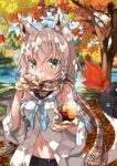 1girl absurdres ahoge animal_ears autumn autumn_leaves bangs braid breasts commentary_request day detached_sleeves eating eyebrows_visible_through_hair food food_on_face fox_ears green_eyes grey_hair hair_between_eyes highres holding holding_food hololive jewelry lake leaf long_hair looking_at_viewer maple_leaf medium_breasts miyabi_(miyabeeya) nature navel open_clothes outdoors plaid plaid_scarf scarf shirakami_fubuki side_braid single_braid single_earring solo steam sweet_potato tail virtual_youtuber wide_sleeves yakiimo