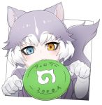 1girl animal_ears blue_eyes brown_eyes closed_mouth dog_(mixed_breed)_(kemono_friends) dog_ears dog_tail elbow_gloves eyebrows_visible_through_hair fang frisbee gloves grey_hair heterochromia japari_symbol kemono_friends looking_at_viewer mouth_hold multicolored_hair nyifu short_hair solo tail translated white_gloves white_hair