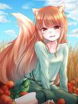 1girl animal_ears apple blue_sky blush brown_hair day food fruit green_skirt highres holo kazami-s long_hair long_sleeves looking_at_viewer open_mouth outdoors red_eyes sitting skirt sky smile solo spice_and_wolf tail wolf_ears wolf_tail