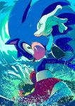1boy animal blue_theme english_commentary ezume_(rosehip) fangs gloves green_eyes grin hedgehog highres mario_&_sonic_at_the_tokyo_2020_olympic_games mario_and_sonic_at_the_olympic_games nintendo no_humans no_pants pose red_footwear sega smile solo sonic sonic_the_hedgehog splashing super_smash_bros. surfing water