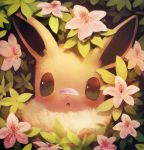 blush commentary_request eevee flower fluffy gen_1_pokemon highres looking_at_viewer manino_(mofuritaionaka) no_humans petals pink_flower plant pokemon pokemon_(creature) solo