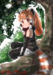1girl bare_shoulders black_gloves black_legwear commentary_request cutoffs dated day elbow_gloves extra_ears eyebrows_visible_through_hair fur_collar gloves highres in_tree kemono_friends leaf legwear_under_shorts lesser_panda_(kemono_friends) long_hair looking_at_viewer multicolored_hair orange_hair outdoors pantyhose red_panda_ears red_panda_tail shirt short_shorts shorts signature sitting sleeveless sleeveless_shirt smile solo striped striped_shirt striped_tail tail tree twitter_username white_shorts yonaka-nakanoma