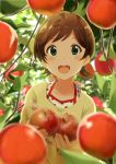 1girl :d ahoge apple blurry blurry_background blurry_foreground blush brown_hair commentary_request food fruit green_eyes highres idolmaster idolmaster_million_live! kinoshita_hinata looking_at_viewer open_mouth plant shiokazunoko short_hair smile solo