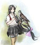 1girl bandeau bird falcon falconry gloves hadanugi_dousa hinata_hibari japanese_clothes kantai_collection shouhou_(kantai_collection) solo thigh-highs