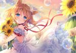 1girl animal_ears bangs bare_shoulders blue_eyes blush bouquet brown_hair bubble cat_ears closed_mouth clouds cloudy_sky commentary_request dress eyebrows_visible_through_hair fingernails flower hair_between_eyes long_hair object_hug off-shoulder_dress off_shoulder original outdoors rainbow red_ribbon ribbon sky smile solo suimya sunflower sunset white_dress yellow_flower
