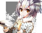 1girl brown_hair character_request commentary_request eyebrows_visible_through_hair face fur_collar grey_hair hair_between_eyes highres holding holding_plate kemono_friends looking_at_viewer plate rice short_hair shuutou_haruka signature solo spoon_in_mouth