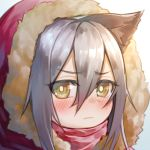 1girl animal_ear_fluff animal_ears arknights bangs blush brown_eyes chi_yei closed_mouth commentary_request eyebrows_visible_through_hair fur-trimmed_hood fur_trim grey_hair hair_between_eyes hood hood_up looking_at_viewer projekt_red_(arknights) red_scarf scarf solo
