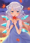 1girl arms_up autumn_leaves bangs blue_dress blue_eyes blue_hair blush bow breasts cirno clenched_hands clouds cloudy_sky commentary_request cowboy_shot dress eyebrows_visible_through_hair hair_blowing hair_bow holding holding_leaf leaf looking_at_viewer maple_leaf nibosisuzu outdoors pinafore_dress puffy_short_sleeves puffy_sleeves scarf shirt short_hair short_sleeves sky small_breasts smile solo tareme touhou twilight white_shirt wind wind_lift wings