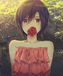 1girl arms_behind_back black_hair day flower hachiware hair_between_eyes highres holding holding_flower idolmaster idolmaster_(classic) kikuchi_makoto looking_at_viewer mouth_hold outdoors red_flower red_rose rose shiny shiny_hair short_hair solo striped upper_body violet_eyes