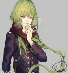 1boy alternate_hairstyle androgynous arm_at_side bangs baozi biting braid coat eating enkidu_(fate/strange_fake) enpera fate/strange_fake fate_(series) food green_eyes green_hair grey_background holding holding_food long_hair long_sleeves looking_away mizutame_tori red_scarf scarf sideways_glance simple_background single_braid solo steam upper_body wrapper