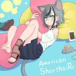 1girl animal animal_ear_fluff animal_ears aqua_eyes bandaid cat_ears cat_tail cellphone collar commentary_request expressionless full_body grey_hair hollow_7th mouse multicolored_hair original phone pillow pillow_hug pleated_skirt shirt shoe_removed shoes short_hair single_shoe skirt smartphone streaked_hair tail