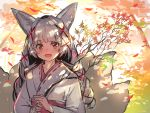 1girl :d absurdres animal_ear_fluff animal_ears bangs blush braid branch eyebrows_visible_through_hair fox_ears fox_girl hair_ornament highres holding holding_branch japanese_clothes kimono long_hair obi open_mouth original own_hands_together red_eyes ribbon_trim sash silver_hair sketch smile solo tree twin_braids white_kimono x_hair_ornament yuuji_(yukimimi)