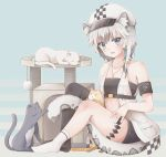 1girl :d animal_ear_fluff animal_ears arknights armband asymmetrical_legwear bandeau bangs bare_arms bare_shoulders belt beret black_belt black_legwear black_shorts blue_background blue_eyes blush cat checkered cliffheart_(arknights) collarbone commentary_request dress eyebrows_visible_through_hair hat highres jewelry looking_at_viewer miaomao mismatched_legwear no_shoes open_clothes open_dress open_mouth pendant pocket short_hair short_shorts shorts silver_hair single_thighhigh sitting sleeveless sleeveless_dress smile socks solo strapless tail thigh-highs tiger_ears tiger_tail tubetop white_dress white_headwear white_legwear