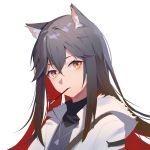 1girl animal_ear_fluff animal_ears arknights bangs black_hair black_shirt brown_hair cat_ears eyebrows_behind_hair food food_in_mouth hair_between_eyes heart heart_necklace highres hood hood_down hooded_jacket hua_ye jacket long_hair looking_at_viewer mouth_hold multicolored_hair open_clothes open_jacket orange_hair parted_lips pocky redhead shirt simple_background solo texas_(arknights) two-tone_hair upper_body white_background white_jacket