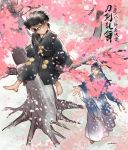 barefoot black_hair cherry_blossoms child doudanuki_masakuni faux_traditional_media from_below in_tree japanese_clothes male_focus mikazuki_munechika outstretched_hand pukun short_ponytail sitting sitting_in_tree thick_outlines touken_ranbu tree younger
