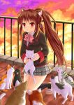 1girl animal animal_ear_fluff animal_ears black_cat black_jacket black_legwear blazer blush bow brown_footwear brown_hair cat cat_ears cityscape clouds cloudy_sky collared_shirt dress_shirt full_body grey_skirt holding holding_animal jacket kemonomimi_mode kneehighs kneeling little_busters! long_hair looking_at_viewer natsume_rin outdoors parted_lips pink_bow pleated_skirt ponytail railing red_eyes rooftop school_uniform shirt shoes sidelocks signature skirt sky solo sunset very_long_hair villyane white_cat white_shirt