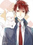 1boy animal animal_on_shoulder artist_name blue_suit cat cat_on_shoulder closed_eyes error hiwa04 looking_at_viewer male_focus mayonaka_no_occult_koumuin miyako_arata multiple_tails necktie red_eyes red_neckwear redhead smile tail two_tails upper_body white_cat yuki_(mayonaka_no_occult_koumuin)