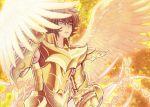 1boy armor guilchii phoenix_ikki saint_seiya short_hair solo wings