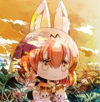 1girl animal_ears bangs bare_shoulders blonde_hair blush bow bowtie clouds eyebrows_visible_through_hair frills kemono_friends leaf medium_hair outdoors plant serval_(kemono_friends) serval_ears serval_print shinagai_hino shirt sky sleeveless sleeveless_shirt smile solo tareme upper_body white_shirt yellow_eyes yellow_neckwear yellow_theme