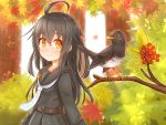 1girl alternate_eye_color antenna_hair autumn_leaves belt bird black_blouse black_hair black_sailor_collar black_serafuku black_skirt blouse breasts collarbone crescent crescent_moon_pin day eyebrows_visible_through_hair forest hair_between_eyes highres kantai_collection leaf long_hair long_sleeves looking_at_viewer maple_leaf mikazuki_(kantai_collection) nature necktie orange_eyes outdoors pleated_skirt sailor_collar school_uniform serafuku skirt small_breasts smile sunlight suzushiro_(gripen39) tree white_neckwear