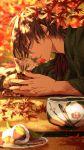 animal autumn autumn_leaves gokotai's_tigers multicolored_hair ookurikara petting tattoo touken_ranbu two-tone_hair yellow_eyes
