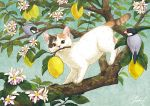 animal bird branch cat cat_focus flower food fruit leaf lemon looking_at_viewer mouth_hold no_humans original takigraphic tree white_flower