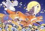 animal bird blue_flower commentary_request flower fox leopard moon night night_sky no_humans orange_flower original outdoors owl rabbit running sky star_(sky) takigraphic white_flower wolf yellow_flower