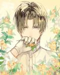 1boy bangs brown_hair buttons collar collared_shirt covered_mouth cuffs flower gloves grey_eyes hand_to_own_mouth heshikiri_hasebe heterochromia holding holding_flower kasa77322 long_sleeves looking_at_viewer male_focus parted_bangs shirt short_hair simple_background sleeve_cuffs solo touken_ranbu upper_body white_gloves white_shirt yellow_background yellow_eyes yellow_flower